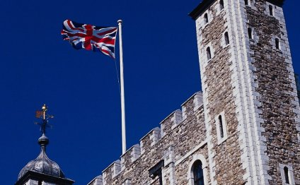 Ravens and the Tower of London