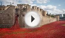 Poppy memorial time-lapse at Tower of London from dawn to dusk