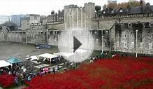 Time-lapse shows Tower of London poppies being removed